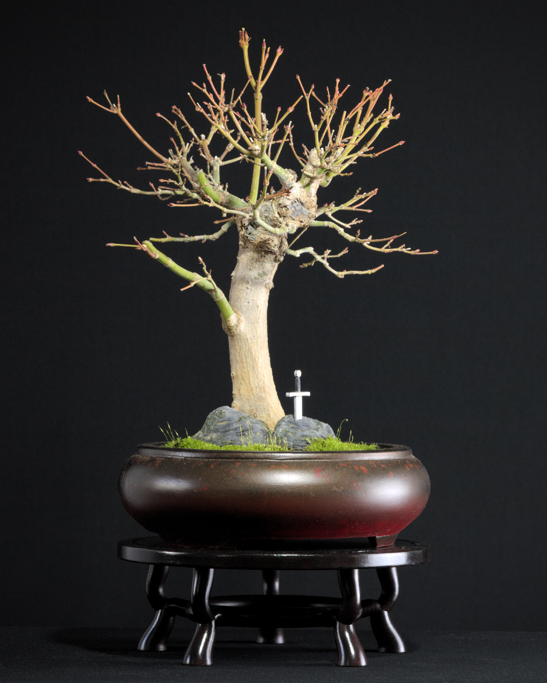 Excalibur 3d Druck Bonsai Dekoration